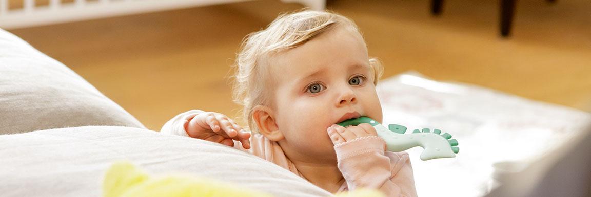Sviluppo orale e Anelli di Dentizione